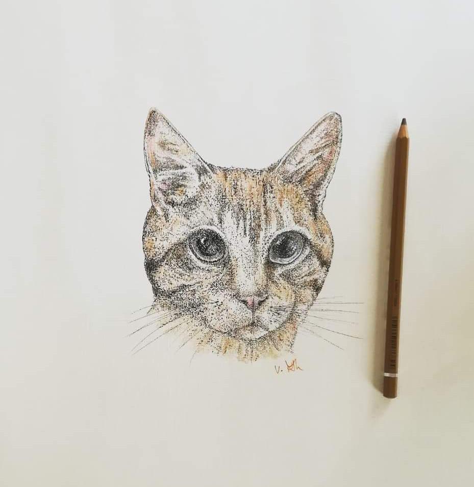 Cat_2_edited.jpg