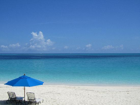 beach-view.jpg