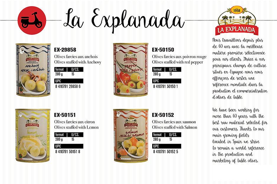 PageExplanada.jpg