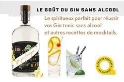 Gin_Québec