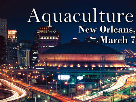 March 2019 - New Orleans