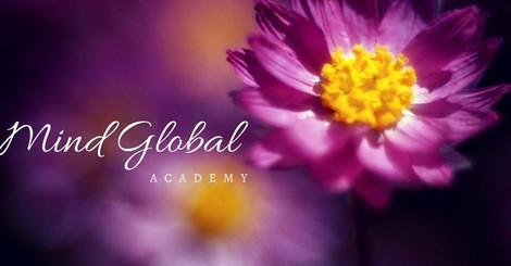 Mind Global Academy