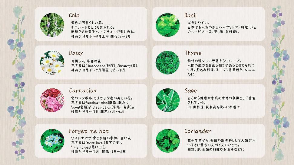 花の種類.jpg