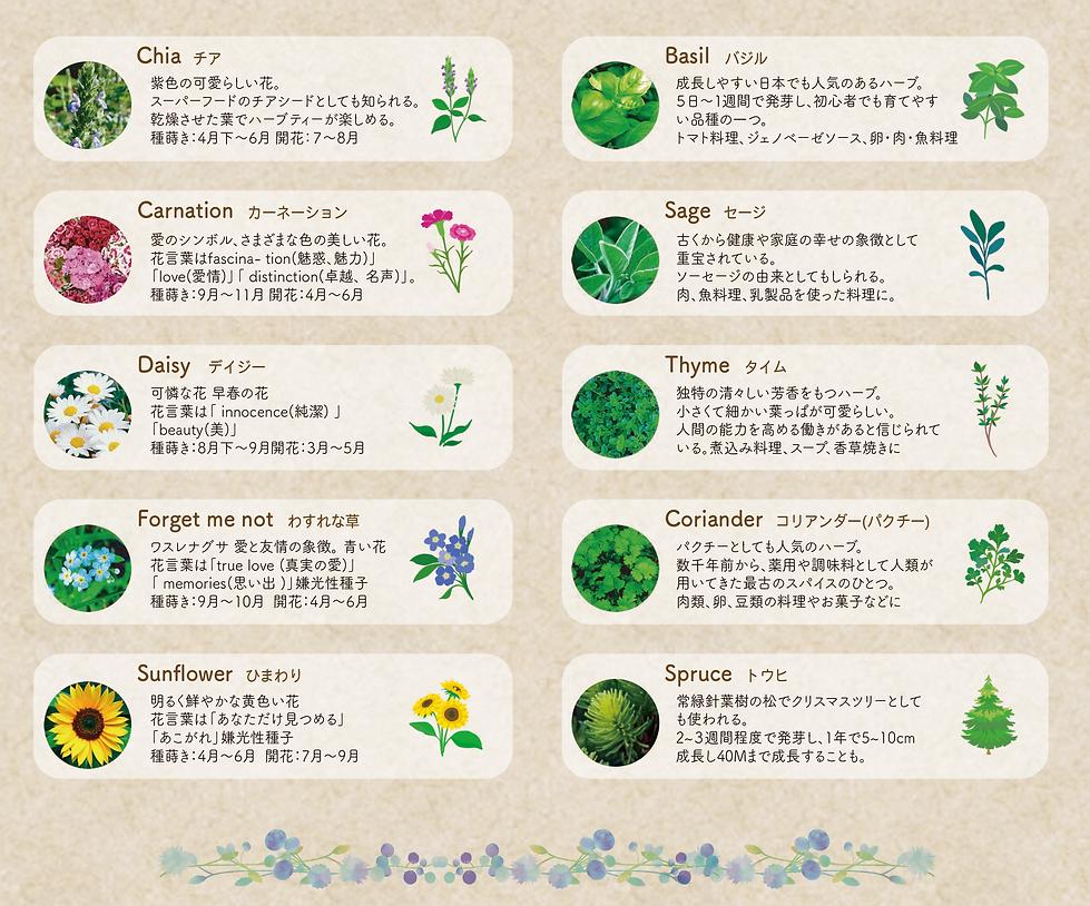 種子2021.png