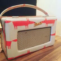 Scion Mr Fox radio