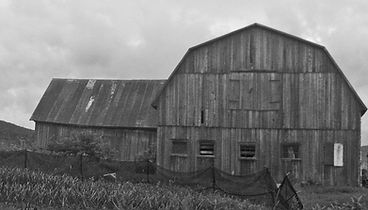 grange noire et blanche.jpg