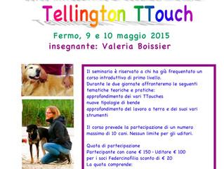 Tellington Ttouch corso di secondo livello