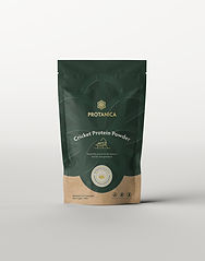 Protanica-Packaging-Mockup-Front-500g.jp