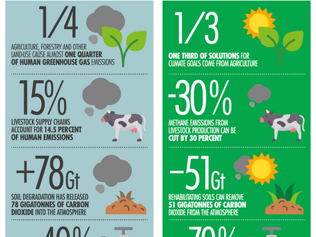 Sustainable Food Systems Can Make a Huge Contribution to Climate Action.