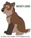bernard_redesign.png