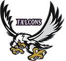 falcon text.jpg