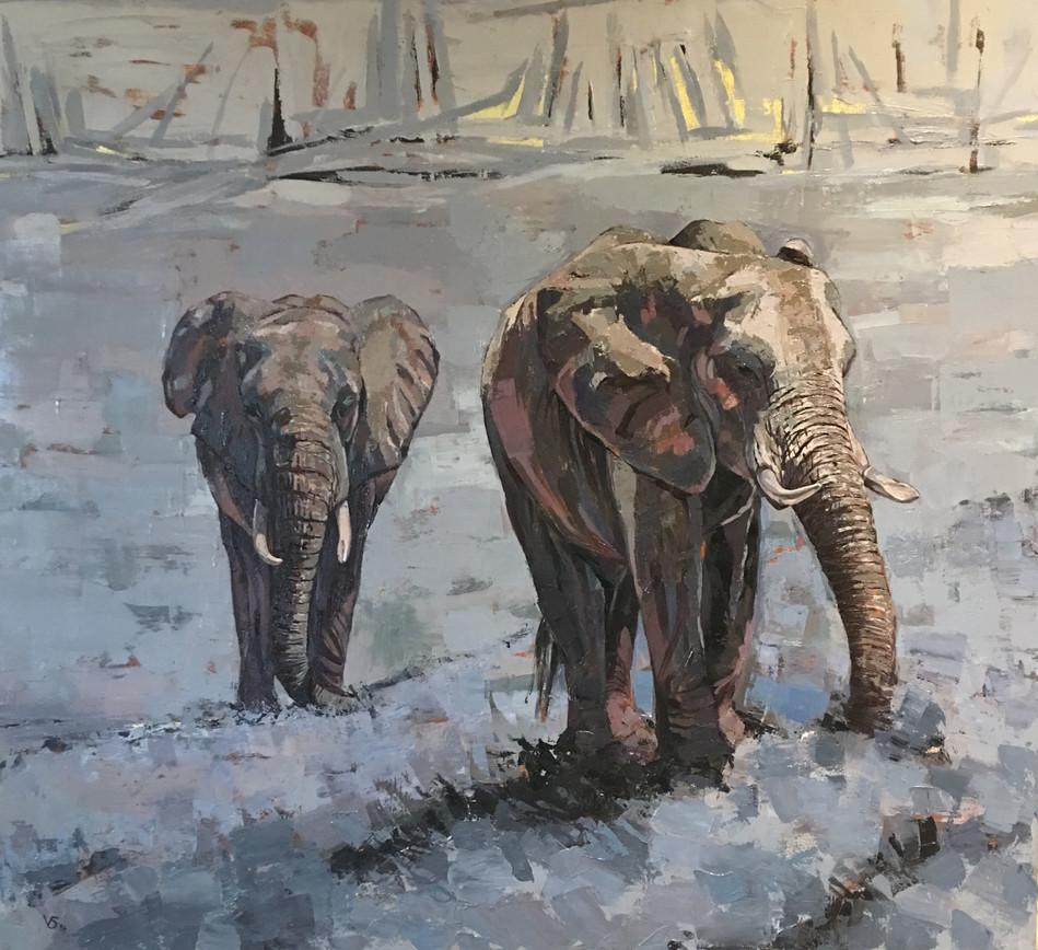 Elephants at Kariba