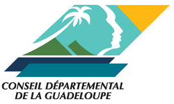 Conseil_Départemental 2021