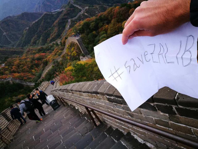#SaveZalib dalla Muraglia Cinese