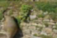 sandstein-historisches-Baumaterial-a.jpg