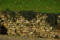 sandstein-historisches-Baumaterial-u