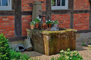 Wandbrunnen-Sandstein-Hund.jpg