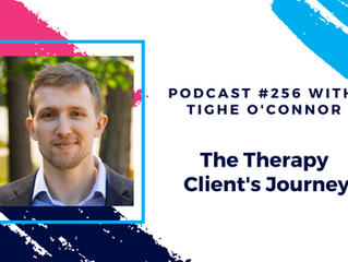 Episode 256 - The Therapy Client's Journey