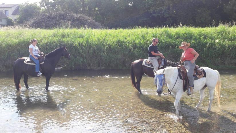 PferdeundReiterinderPerschling2.jpg