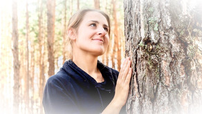 Exchange Psychic Energy with a Tree