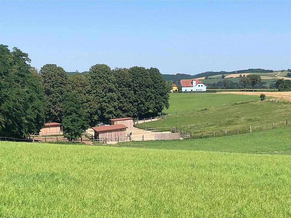 PanoramaPferdehofJeutendorf.jpg