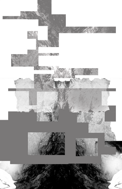 99 Styles Gray Scale Process