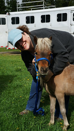 Tonka Toy, one of our Therapy Miniature Horses, a Silver Bay Mini Horse.