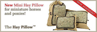 New Mini Hay Pillow for Miniature Horses and Ponies!