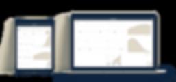 iRESOLVE WEB SHOWCASE-min.png