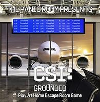 CSI+GroundedOnline.jpg