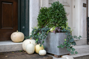 Planters & Containers 16