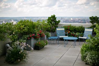 Rooftops & Decks