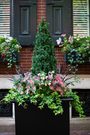 Planters & Containers 10