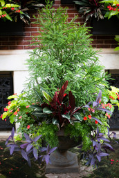 Planters & Containers 4