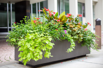 Planters & Containers 14
