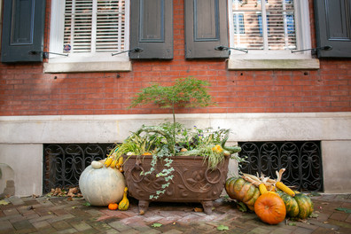 Planters & Containers 11