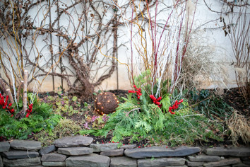 Courtyards & Patios 16