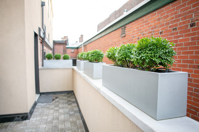 Planters & Containers 5