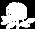 Pioen logo wit.png