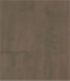 Calgary Plank-Outback.png