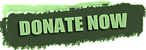 Green Donate_edited.png