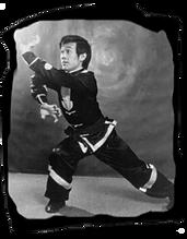 Kung Fu - Hung Ga