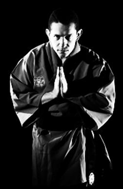 Kung Fu - Shifu Renato Calheiros de Barros