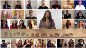 """PVBLIC  joins Mayssa Karaa and 88 musicians from 26 countries to create the song """"PAUSE FOR HUMANITY"""