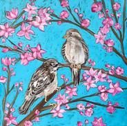 Sparrows in Plum Tree