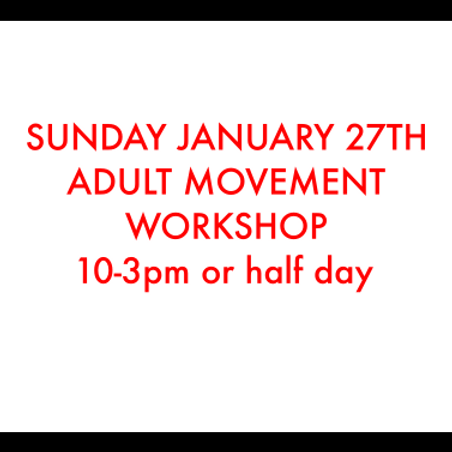 Adult Movement Workshop Full Day