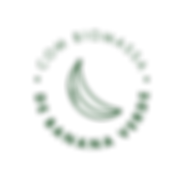 RFDL_SELO_06 copy 5_2x.png