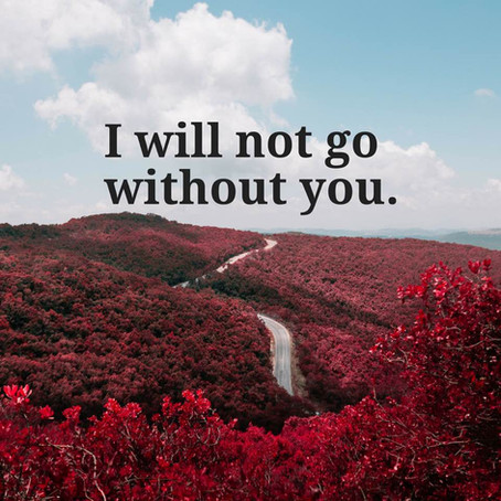 I Will Not Go Without You