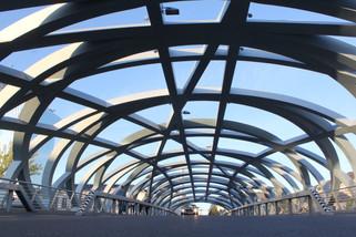 Pont Hans-Wilsdorf