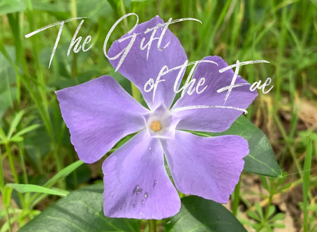 The Gift of the Fae